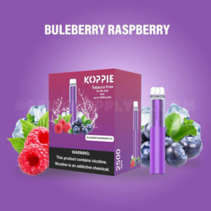 Koppie Blueberry Raspberry Ice