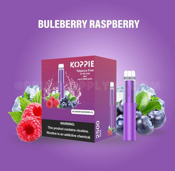 Koppie Blueberry Raspberry Ice