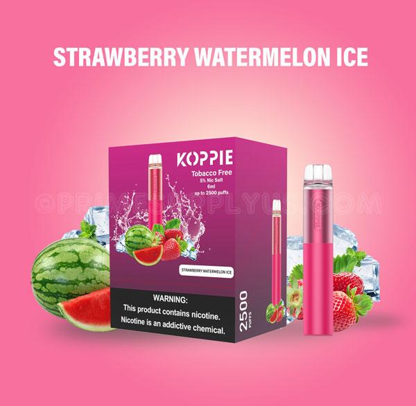 Strawberry Watermelon Ice